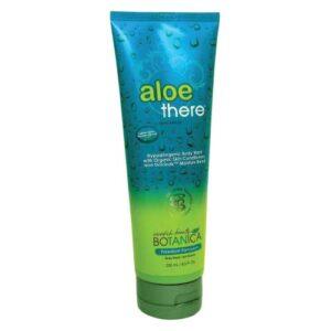 Aloe There Body Wash - Swedish Beauty